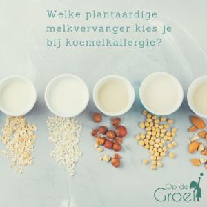 plantaardige melk kind koemelkallergie