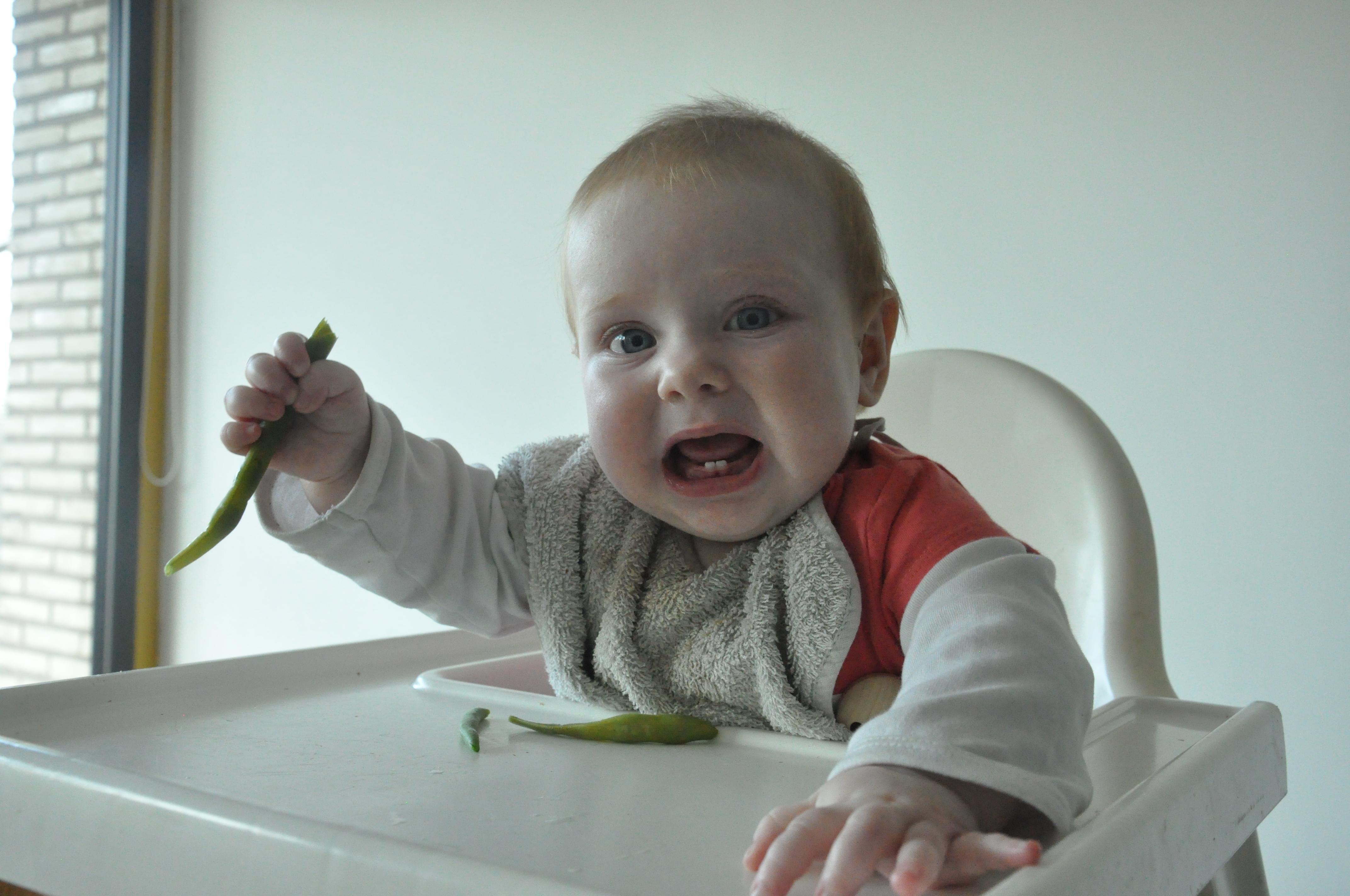 Rapley-kindjes minder kieskeurig, maar geen effect op gewicht?